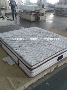 Container Loads of Comfortable Fabric Spring Mattress pictures & photos