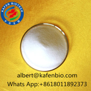 Male Hormone Steroids Androsterone Powder 53-41-8