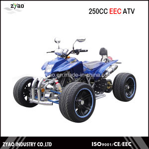 250cc EEC Racing ATV with 14 Inch Alloy Wheel Alloy Arm Legal on Road pictures & photos