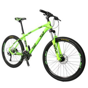 Best Mountain Bike Supplies for Mountain Biking pictures & photos