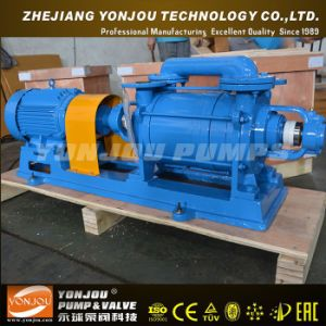 Water Ring Vacuum Pump, Mainly Used in Air and Gas Trans, Liquid Ring Vacuum Pump pictures & photos