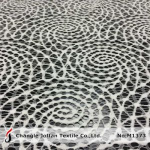 Paisly Nylon Mesh Lace Fabric (M1373) pictures & photos