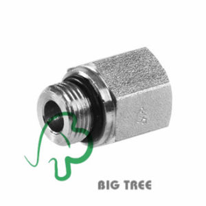 SAE O-Ring Boss Orb Male to SAE O-Ring Boss Orb Female Reducer/Expander pictures & photos