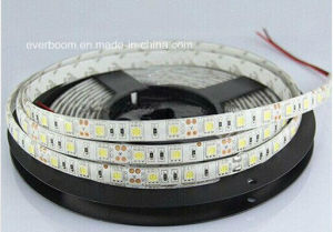 12V 60LED SMD3528 Warm White Nature White Flexible LED Strip Lighting with CE RoHS for Lighting Decoration (ST3528-12-6001)