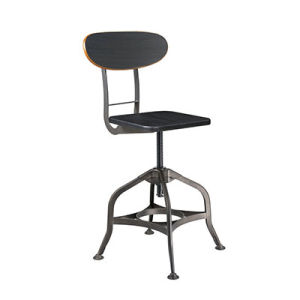 Cheap Dining Tolix Industrial Bar Stool with Wooden Back (FS-Scew14037-1) pictures & photos
