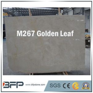 M267 Golden Leaf Natural Marble Stone Tile pictures & photos