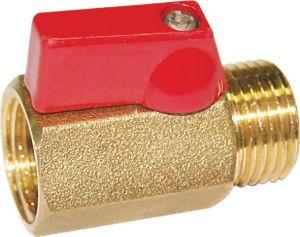 Brass Mini Valves pictures & photos