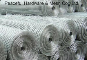 Galvanized Welded Wire Mesh (H-15) pictures & photos