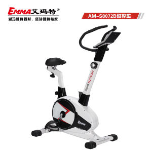 Indoor Bike Trainer /Magnetic Bike Trainer/ Upright Bikeam-S8205 pictures & photos