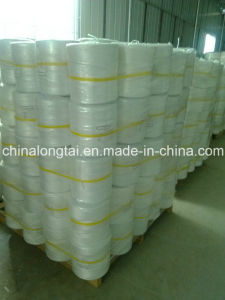 Agriculture PP Packaging Baler Twine PP Hay Twine pictures & photos