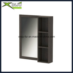 Bathroom Wall Cabinet with Mirror Door