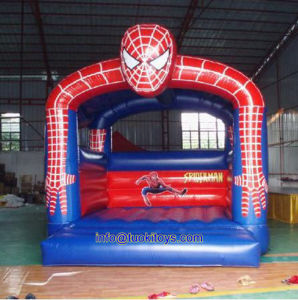 Durable and Reliable Inflatable Bouncer Accept OEM and ODM (A112)