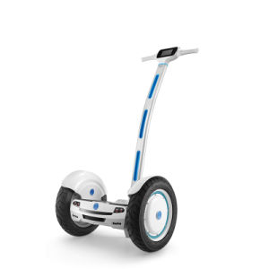 China Manufactory! Hot Selling Two Wheel Self Balancing Electric Scooter with Handle Ce/FCC. RoHS pictures & photos