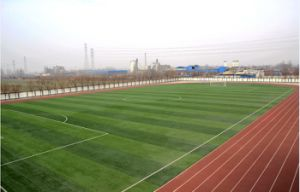 Artificial Grass with Meshy Turf Fiber for Football/Soccer Field