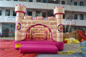 Cheap Cartoon Inflatable Jumping Castle (CHB485) pictures & photos