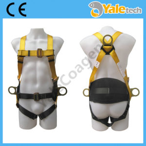 En361 Industrial Safety Belt Yl-S309 pictures & photos