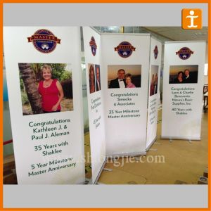 Economy Roll up PVC Banner for Advertising (TJ-003) pictures & photos