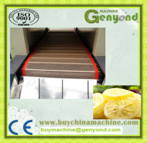 High Efficient Belt Tunnel Type Sliced Fruit and Vegetable Drying Machine pictures & photos