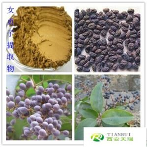 Free Sample Ligustrum Lucidum Extract Oleanolic Acid pictures & photos