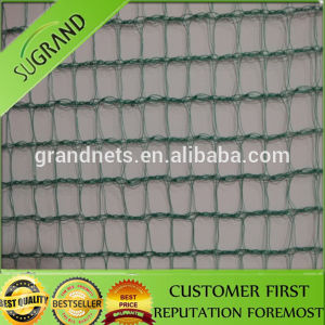 High Quality PE Anti Bird Net pictures & photos