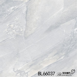 Home Decoration Interior Porcelain Stone Tile Stone Flooring Tile (600X600mm)