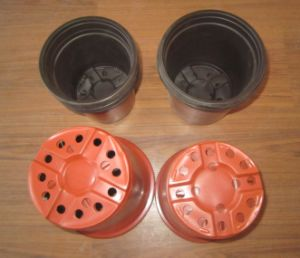 Automatic Online Plastic Vacuum Machine pictures & photos