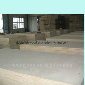 SGS Certificate UV White Birch Plywood for American Market pictures & photos