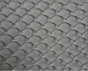 Professional China Hot Chain Link Fence Panels Sale / Galvanized Chain Link Fence pictures & photos
