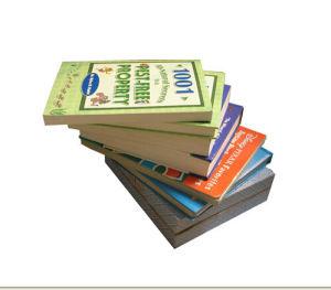 Paperback Novel / Story Book Printing Service (jhy-076)