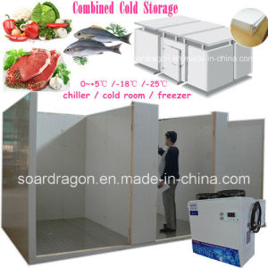 Pratical Cold Storage Combined with Chiller Room and Freezer Room pictures & photos