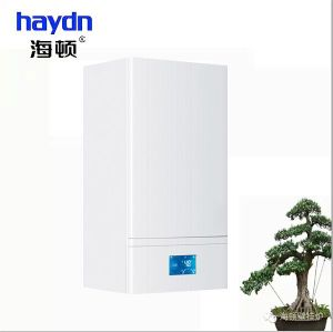 CE Certified Wall Mounted Gas Boiler (Programmer II Series -Type H)