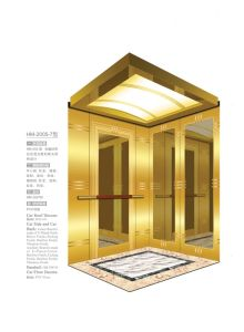 Luxury Passenger Elevator pictures & photos