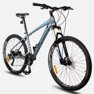 Super 30s Pit MTB with Aluminum Alloy Frame pictures & photos