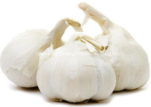 2016 New Crop White Garlic with A Grade Quality pictures & photos