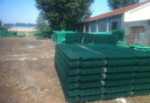 100*100mm PVC Coated Welded Wire Mesh Panel pictures & photos