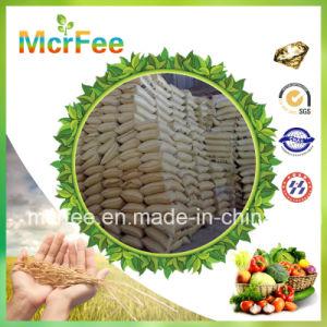 Hot Sale Sop High Quality Potassium Sulphate Fertilizer pictures & photos