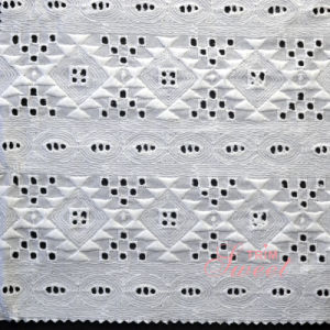 Most Popular Allover Cotton Embroidery Lace Fabric pictures & photos