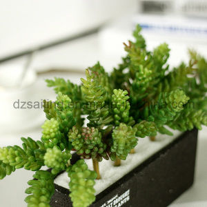 Decorative Plant Natural Touch Artificial Succulents Artificial Flower (SW17663) pictures & photos
