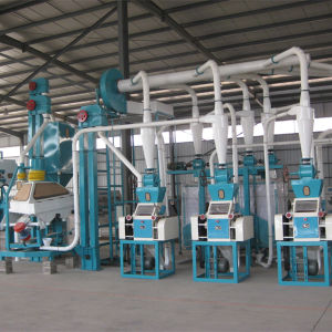 Maize/Corn Flour Mill Machine (6FTF-100) pictures & photos