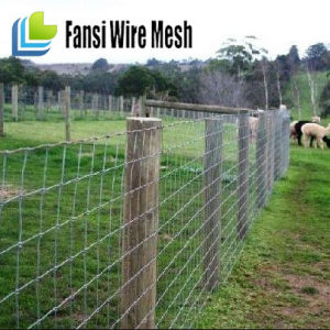 Hinge Joint & Stay Stiff Equestrian Fencing Mesh pictures & photos