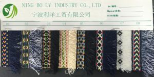 Polyester Jacquard Woven Tape 01-08 pictures & photos