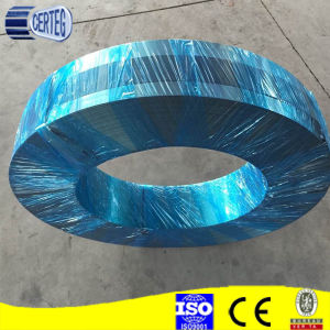 Annealed Cold Rolled Steel Strips C45 sheet pictures & photos