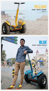 Popular 2 Wheel Self Balancing Electric Standing Scooter with Handle pictures & photos