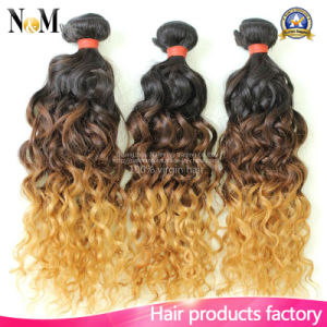 9A Virgin Indian Hair Bundles Ombre Deep Wave Curly Hair Two Tone Indian Hair Weave pictures & photos
