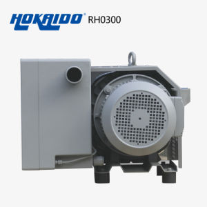 Hokaido Energy Saving Direct-Drive Mini Electric Vacuum Pump (RH0300) pictures & photos