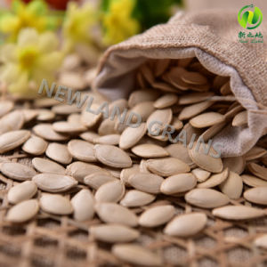 Top Quality Shine Skin Pumpkin Seeds with 10cm From Inner Mongolia for Cook pictures & photos