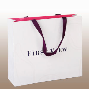 Promotional Printed Gift Paper Bag pictures & photos