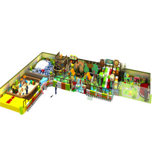 Professional China Indoor Playground Manufacturer pictures & photos