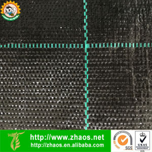 PP Weed Mat Fabric with UV Resistant pictures & photos