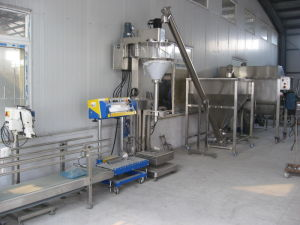 Bulk Bag Weigh-Fill Powder Packaging Machine pictures & photos